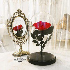 Роза в колбе King красная
