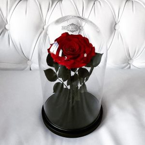 Изящная Роза в колбе красная