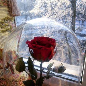 Роза в стекле красная новогодняя