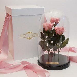 Розы под стеклом розовые