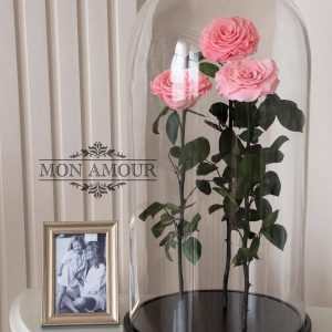 Розы в колбе Premium розовые