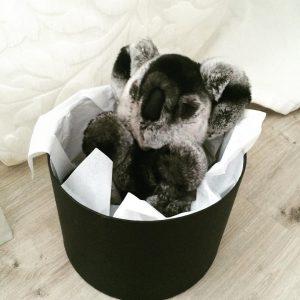 Меховые игрушки коала черная спящая